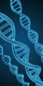 eliminatie + uitroeing genetisch bep. ziekten DNA